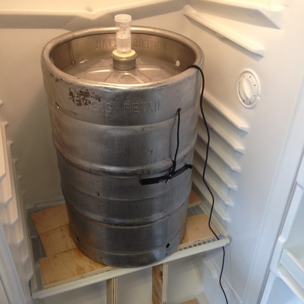 Upgrade path: fermentation